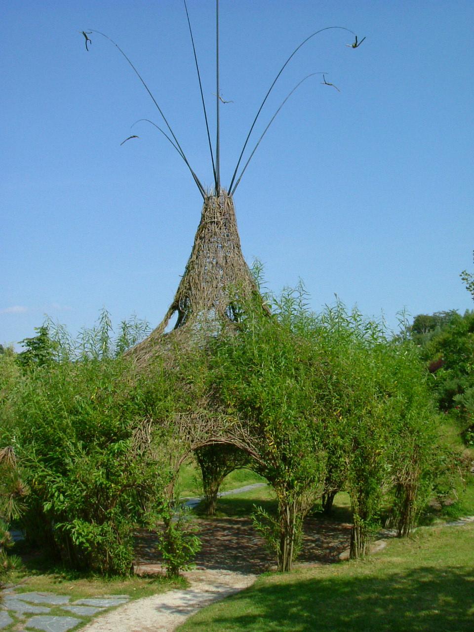 Image Result For Garden Design Cornwall